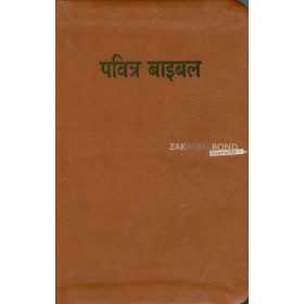 Hindi Bible Easy-to-Read Version