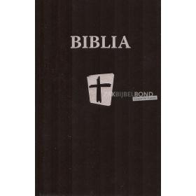 Rumanian Bible NTR