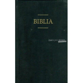 Roemeense Bijbel groot