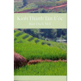 Vietnamese New Testament in contemporary Bible translation. Medium sized paperback.