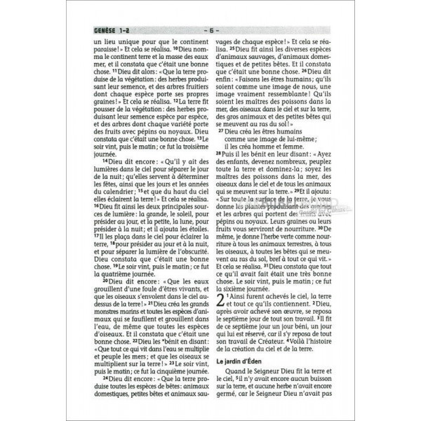 French Bible in the Français Courant translation. Mini sized flexible cover.