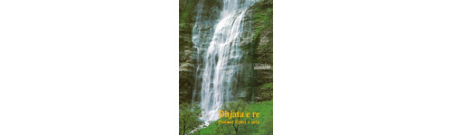 Multilingual publications