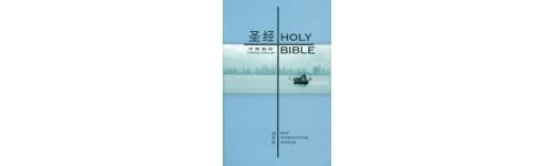 Ndonga Bijbels